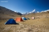 chandratal camp